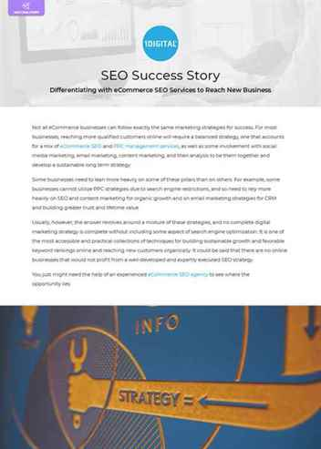 Differentiating with eCommerce SEO Services to Reach New Business