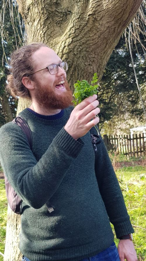 Foraging in London where a forager can find all sorts of interesting edible leaves and plants