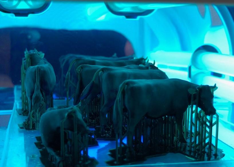 3D Druck härten für Bilderschau