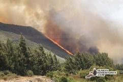 franschhoek-fire-130128-07
