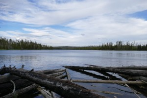 Ice Lake Yellowstone NP