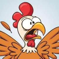 Autoconhecimento não é para galinhas