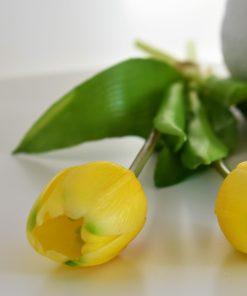 Kytička tulipánov - žlté