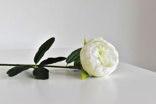 Umelý kvet Pivónia