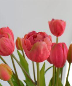 Kytička tulipánov-ružové