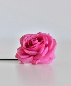 Ruža tmavoružová