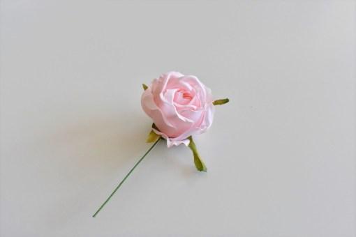 Mini púdrová ruža