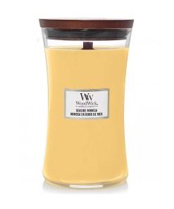 woodwick-sviecka-seaside-mimosa-6095g