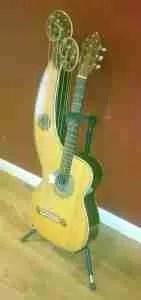 Live Acoustic Special Loughborough - Harp Guitar