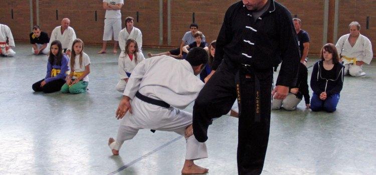 Karatetrainingscamp Steinfurt-Borghorst 2011