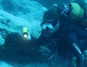 arkeologlar su altında 17 işaretle yeni bir dil geliştirdi