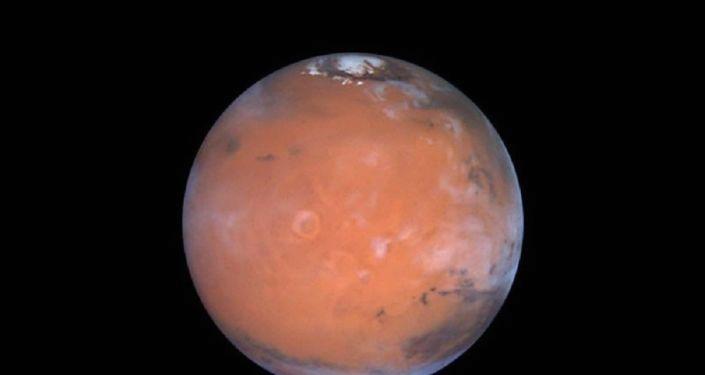 Bilim insanlarından 'Mars Vebası' uyarısı