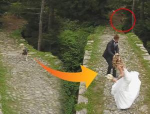 fotoğraf çekiminde gelin ve damadı köpek kovaladı