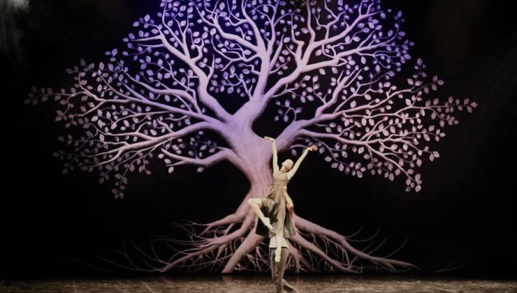 pandemic bale performansı haşim i̇şcan kültür merkezi opera sahnesinde gerçekleşti.