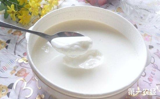 酸奶能解酒嗎?酸奶解酒是誤區? - 糖酒快訊 - 第一農經網