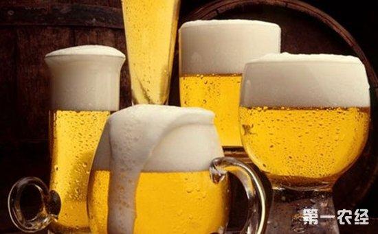 啤酒為什么會產生泡沫?啤酒泡沫越多越好嗎? - 糖酒快訊 - 第一農經網