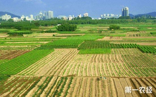國家撥付50.9億輪作休耕補貼如何發放?農民能拿到補貼嗎? - 政策 - 第一農經網