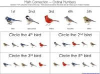 Counting is for the Birds Kindergarten Literature Unit