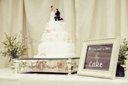 Plum Park Hotel Vintage Wedding Photographer