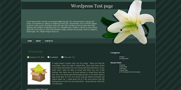 lily-wordpress-theme