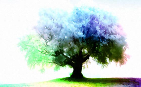 https://i0.wp.com/www.1stwebdesigner.com/wp-content/uploads/2009/03/season-tree-wallpaper-11.jpg
