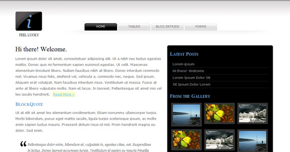 i-feel-lucky-xhtml-css-template