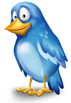 beautiful-twitter-bird-icon