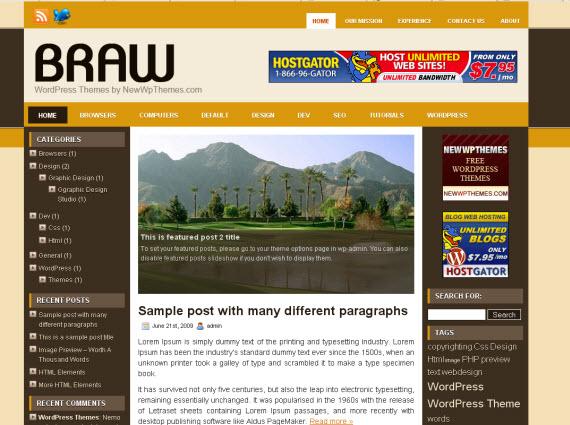 braw-free-premium-wordpress-theme