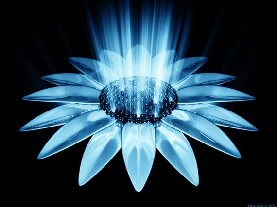 emploding-sunflower নিন ৪০টি 3D ওয়ালপেপার