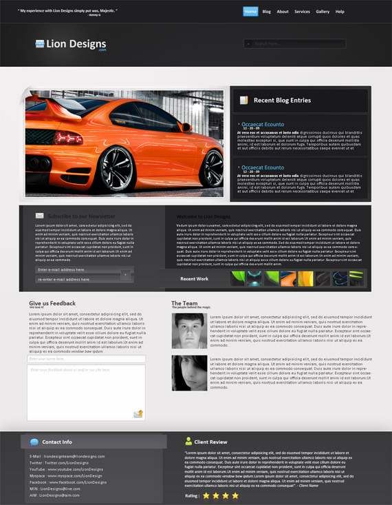 Lion-design-web-design-interface-inspiration-deviantart