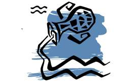 Signe du zodiaque : le Verseau