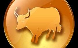 Boeuf: Horoscope Chinois 2015