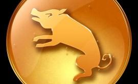 Cochon: Horoscope Chinois 2015