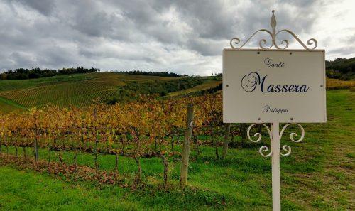 Condé vineyards