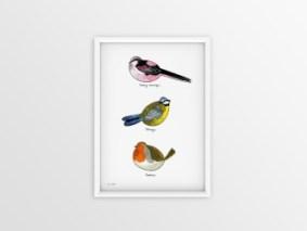 thumbnail_lille fugleplakat #1