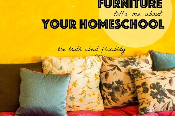 When is the last time you moved your couch? You answer reveals a potential homeschooling weakness.