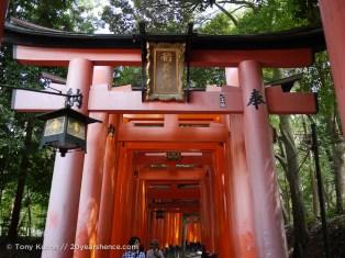 Big torii