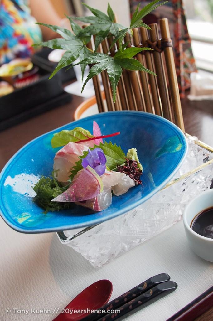 The sashimi