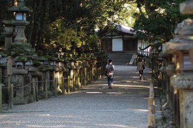The lead up to Kasuga Taisha