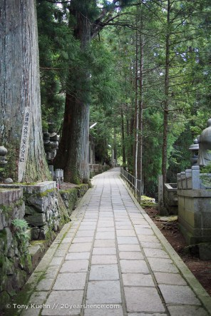 The path through the cemetery