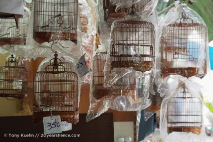 More birdcages