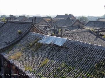 Grassy rooftops