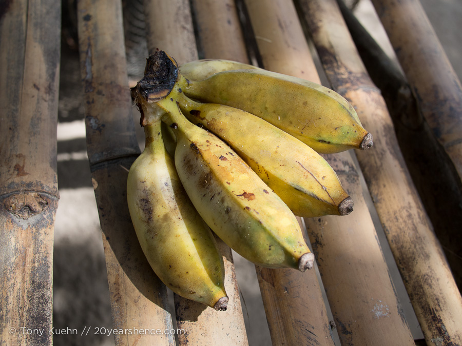 Apo plied us with fresh-from-the-tree bananas before lunch, as many as we could eat