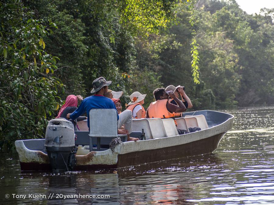 Borneo wildlife river safari on the Kinabatangan river