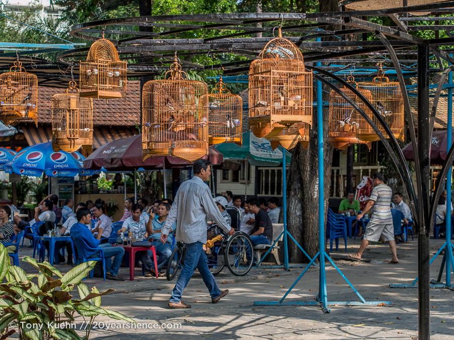 Songbird café, Ho Chi MInh City