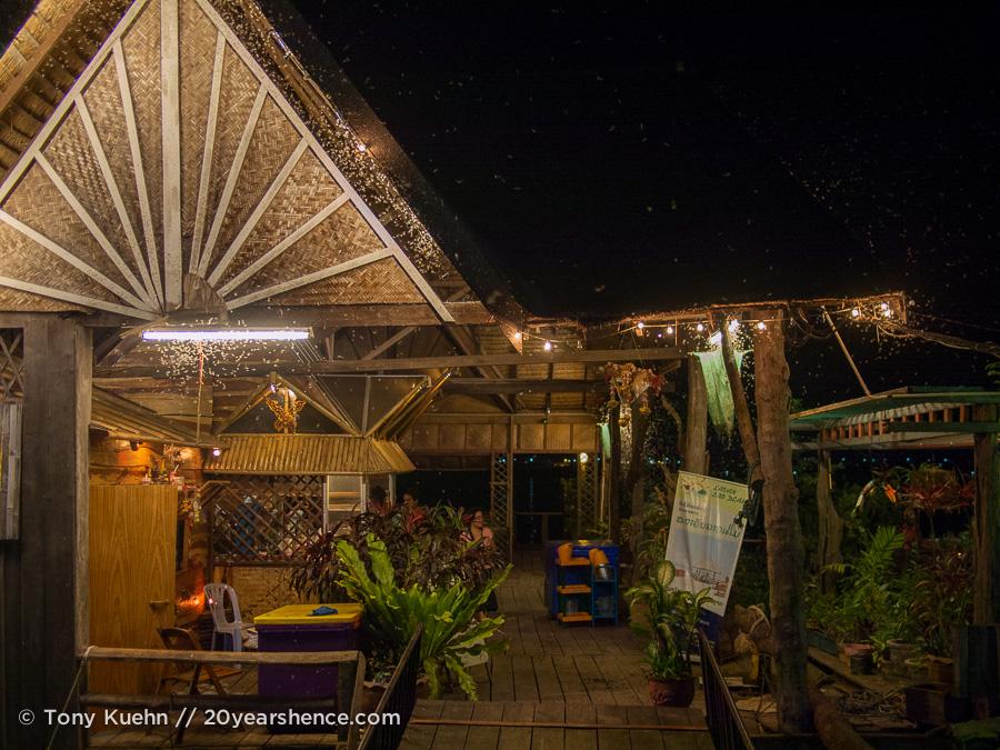 Savan Lao Dearm at night