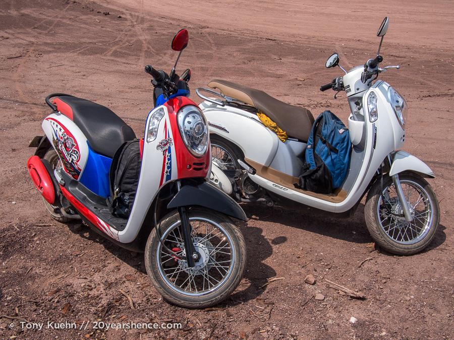 Our Honda Scoopies