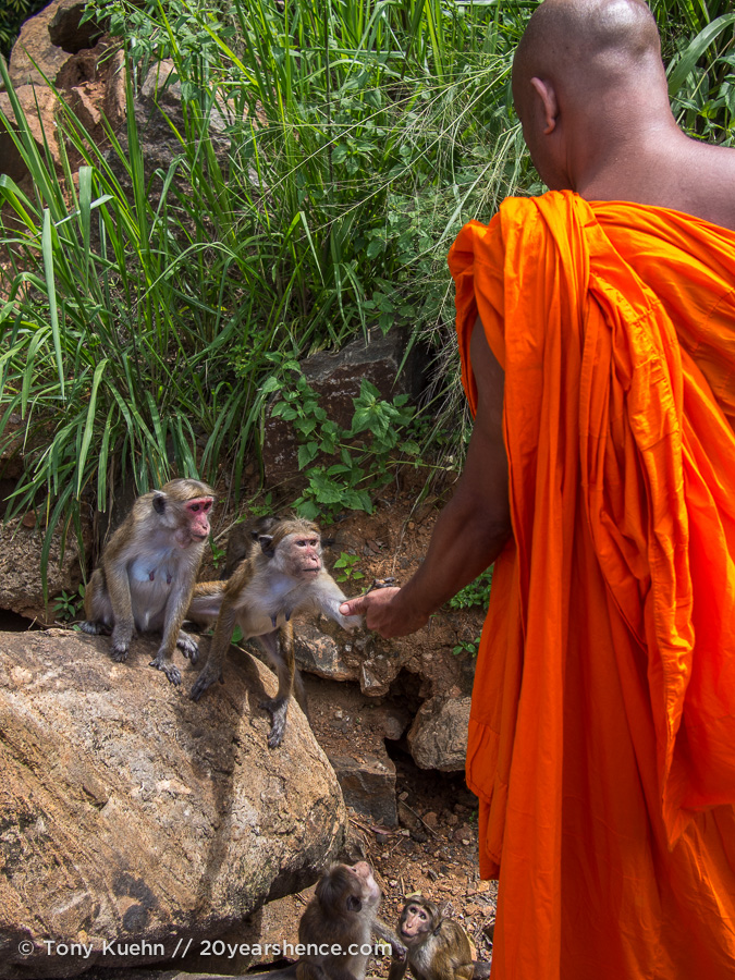 A monk and a monkey, near Baticaloa, Sri Lanka