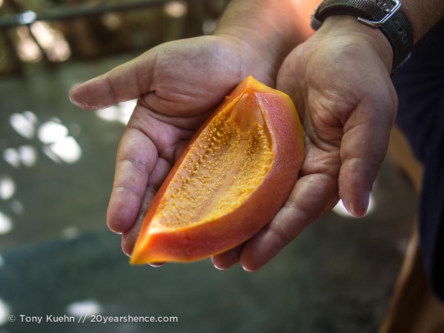 Sri Lankan Papaya