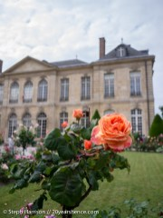 Pretty Musée Rodin Gardens